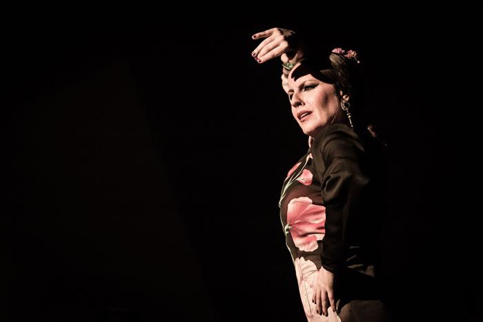 Bailaora Flamenca